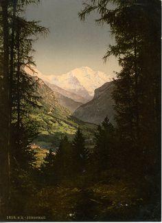 Berner Oberland. Die Jungfrau vom Rugen aus.    #Europe #Suisse_Nouveautés #Alpes_Suisses
