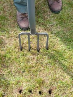Use a pitchfork or aerator to spike the lawn, this allows air to circulate to the grass roots and breaks up compacted soil.