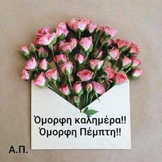 Vintage Flowers, Red Flowers, Flower Patterns, Flower Designs, Fleur Orange, Peonies Season, Boquette Wedding, Birthday Cake With Flowers, Sleeping Beauty