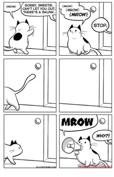 "25 Very Real Cat Comics For Your Caturday Pleasure - Funny memes that ""GET IT"" and want you to too. Get the latest funniest memes and keep up what is going on in the meme-o-sphere. Animal Memes, Funny Animals, Cute Animals, Cat Comics, Funny Comics, Crazy Cat Lady, Crazy Cats, I Love Cats, Cute Cats"