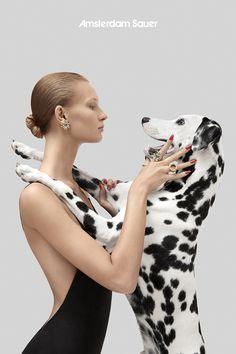 Animal Photography, Fashion Photography, Amor Animal, Fashion Cover, Animal Projects, Foto Pose, Girl And Dog, Dog Portraits, Photoshoot Inspiration