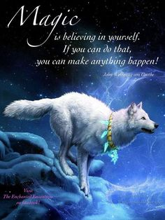Magic is believing in yourself.  If you can do that, you can make anything happen!  ~ John Wolfgang con Goethe