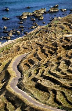 Terraced Rice Paddies. Wajima, Ishikawa, Japan.
