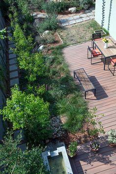 Garden 32 in Venice   Theodore Payne Native Plant Garden Tour