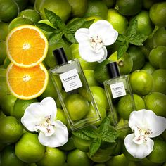 Lime and Basil  Fresh, enthrallimg note of a summer embrace      The fragrance opens with a citrusy chord of Tangerine and Bergamot, refreshed by a bubbly note of Lime. The body develops on a floral theme of Iris and Lilac enlivened by the aromatic notes of White Thyme and Basil. The richly persistent background rounds the fragrance off with notes of Vetiver and Patchouli.
