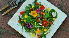Edible Flower Salad #Recipe by Iolanda Bustos the flower chef of Girona