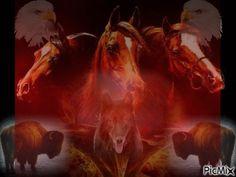 PicMix women horses Gifs | Horses - PicMix