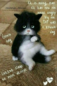Greetings For The Day, Evening Greetings, Good Morning Good Night, Good Night Quotes, Afrikaanse Quotes, Goeie Nag, Morning Pictures, Morning Pics, Good Night Sweet Dreams