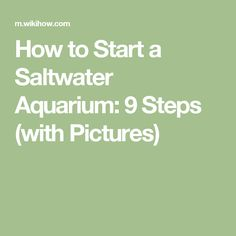 How to Start a Saltwater Aquarium: 9 Steps (with Pictures)