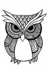 Zentangle Art Art - Tribal Owl - Black and White by Carissa Weber