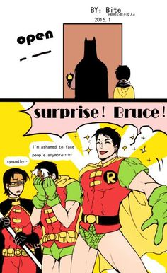 「Robin Origins: 1」