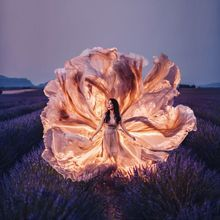 I Travel The World To Photograph Girls In Dresses Against Backgrounds Of The Most Beautiful Places (Again) Most Beautiful, Beautiful Places, Flower Model, Tulip Fields, A Whole New World, Portrait Art, Daffodils, Art Forms, Girl Pictures