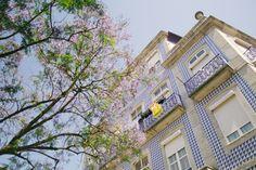 Agora está na lei: é proibido remover azulejos das fachadas | P3