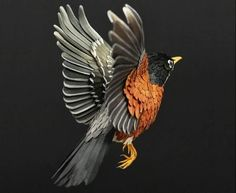 We talk about Art, Design and Architecture, feature talented artists from around the world.Come for the Art and checkout our Apps. Bird Sculpture, Sculptures, American Robin, Robin Bird, Paper Birds, Beautiful Birds, Blue Bird, Animal Pictures, Paper Art