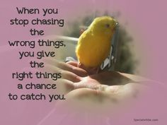 When you stop chasing the wrong things…