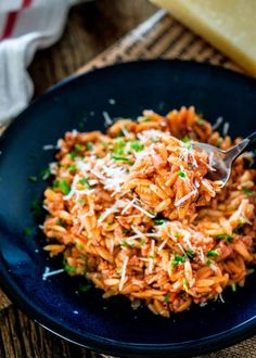 One Pot Spicy Pork Ragu with Orzo. One Pot Spicy Pork Ragu with Orzo this deeply flavored spicy pork ragu with orzo makes for a delicious and comforting dinner. Orzo Recipes, Cooking Recipes, Healthy Recipes, Yummy Recipes, Dinner Recipes, Meal Recipes, Family Recipes, Yummy Yummy, Chicken Recipes