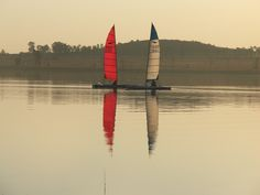 Dart 18 catamarans at Vaal Dam, South Africa I Am An African, Catamaran, Serenity, South Africa, Sailing, In This Moment, River, Cats, Heart