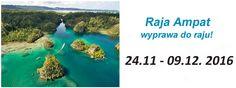 http://nautilus.com.pl/wyprawy/rajaampat-indonezja.html