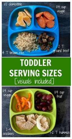 Toddler Serving Sizes [Visuals Included Learn what and how much your toddler should be eating with actual pictures of toddler serving sizes. Mom to Mom Nutrition The post Toddler Serving Sizes [Visuals Included appeared first on Toddlers Ideas. Toddler Menu, Healthy Toddler Meals, Toddler Lunches, Kids Meals, Healthy Snacks, Healthy Eating, Healthy Recipes, Toddler Food, Toddler Dinners