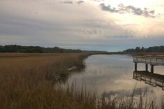 Tivoli River Bryan County GA Photograph Copyright Brian Brown Vanishing Coastal Georgia USA 2015