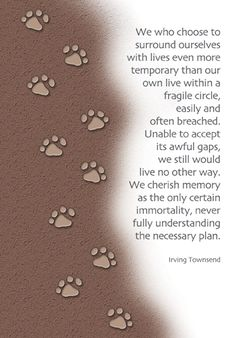 Sympathy card for the loss of a pet, with quote by Irving Townsend