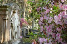 Detail at Bonaventure Cemetery - Savannah, Georgia by Elvis Pépin