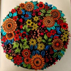 Johanna Basford | Picture by Paula Peretti | Colouring Gallery Adult Coloring Book Pages, Coloring Books, Joanna Basford, Johanna Basford Secret Garden, Secret Garden Coloring Book, Johanna Basford Coloring Book, Coloring Tips, Coloring Tutorial, Polychromos