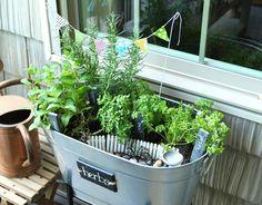 Less-Than-Perfect Life of Bliss: Miniature Garden Party of Herbs Herb Garden, Home And Garden, Garden Fun, Little Gardens, Backyard, Patio, Growing Vegetables, Amazing Gardens, Beautiful Homes