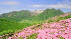 Kuju Renzan, Oita  九重連山|大分県