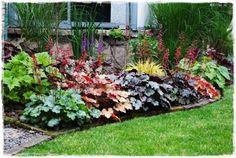Courtyard Landscaping, Front Yard Landscaping, Small Backyard Patio, Heuchera, Beautiful Flowers Garden, Green Life, Summer Garden, Landscape Design, Coral Bells