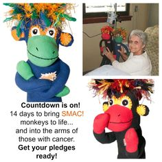The countdown is ON. In 14 days, YOU can help bring SMAC! Sock Monkeys Against Cancer to life and into the arms of those with My Passion, Cancer Awareness, Dinosaur Stuffed Animal, It Works, Arms, Bring It On, Sock Monkeys, Day, Action