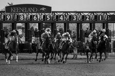 TITLE: Keeneland Races #2  ABOUT Spending a day at Keeneland is one of the favorite pastime of many Lexingtonians. A National Historic Landmark, Keeneland features beautifully landscaped grounds that are open to the public every day. Fans and horsemen alike are welcome to enjoy its spectacular racing, attend one of its annual horse sales, or simply visit the grounds and celebrate Keeneland's timeless beauty.  This photograph was taken sometimes in October of 2013, while the racing season…