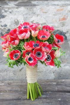 bukiet ślubny anemony - Szukaj w Google