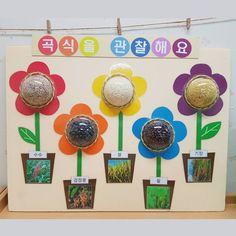 @brillant_dear - 핸진   연휴 다 반납하고 만든 교구들.. #유아교육과 #교구 #음률영역 #과학영역 #숟가락실로폰 Diy And Crafts, Crafts For Kids, Kindergarten Science, Childhood Education, Childcare, Projects For Kids, Spring Flowers, Handicraft, Planting Flowers