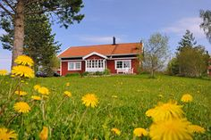 finnish Houses | Finland