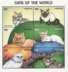 Cats of the World | postage stamps - Lesotho, 1998