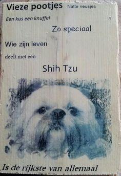 Shih tzu tekstbord foto op hout