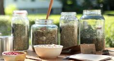Creating a Beautiful & Organized Home Herbal Apothecary