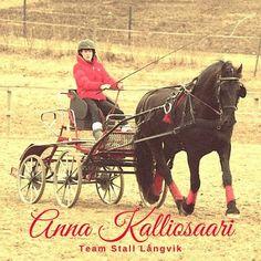 Hösten har fört med sig mycket nytt och bland det finaste är Anna Kalliosaari och möjligheterna att öppna dörrarna för fler elever och nya verksamheter. Läs mer om vårt team på hemsidan. Anna