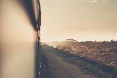 Train trips in Australia