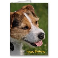 Customizable Happy Birthday from the Dog Greeting Card Design from Love Shack