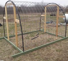 constructing a small greenhouse from cattle panels Small Greenhouse, Greenhouse Plans, Greenhouse Gardening, Texas Gardening, Container Gardening, Back Gardens, Outdoor Gardens, Cattle Panels, Veg Garden