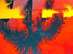Sun & Shade an abstract photograph depicting sun, heat, trees, shade, reflections, warmth.