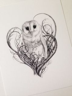Barn Owl Print - Owls - Limited Edition Giclée Print - I Love British Animals Collection