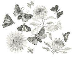 Разнообразие и гармония природы в необычных картинах Michelle Morin - Ярмарка Мастеров - ручная работа, handmade