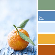 Colorful palette of bright, eye-catching colors. Orange and lemon, green and sky-blue create a natural harmony. From this range of colors you'll feel light Orange Color Palettes, Colour Pallette, Colour Schemes, Color Combos, Color Patterns, Orange Palette, Color Harmony, Color Balance, Design Seeds