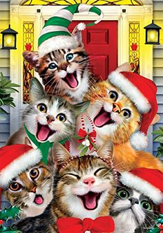 This adorable kitty cat garden flag shows a hilarious group of cats all dressed up for Christmas, making faces and posing for a selfie. Christmas Kitten, Christmas Animals, Christmas Scenes, Christmas Pictures, Christmas Garden Flag, Christmas Decor, Image Chat, Cat Selfie, Cat Garden