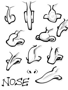 Cartoon Caricatures | few examples of drawing the nose.