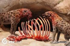 Artist's reconstruction of cave hyena