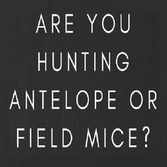 Ask yourself important question: Are you hunting antelope or field mice'? Field Mice, Hunting Quotes, Calm, Deer Hunting Quotes